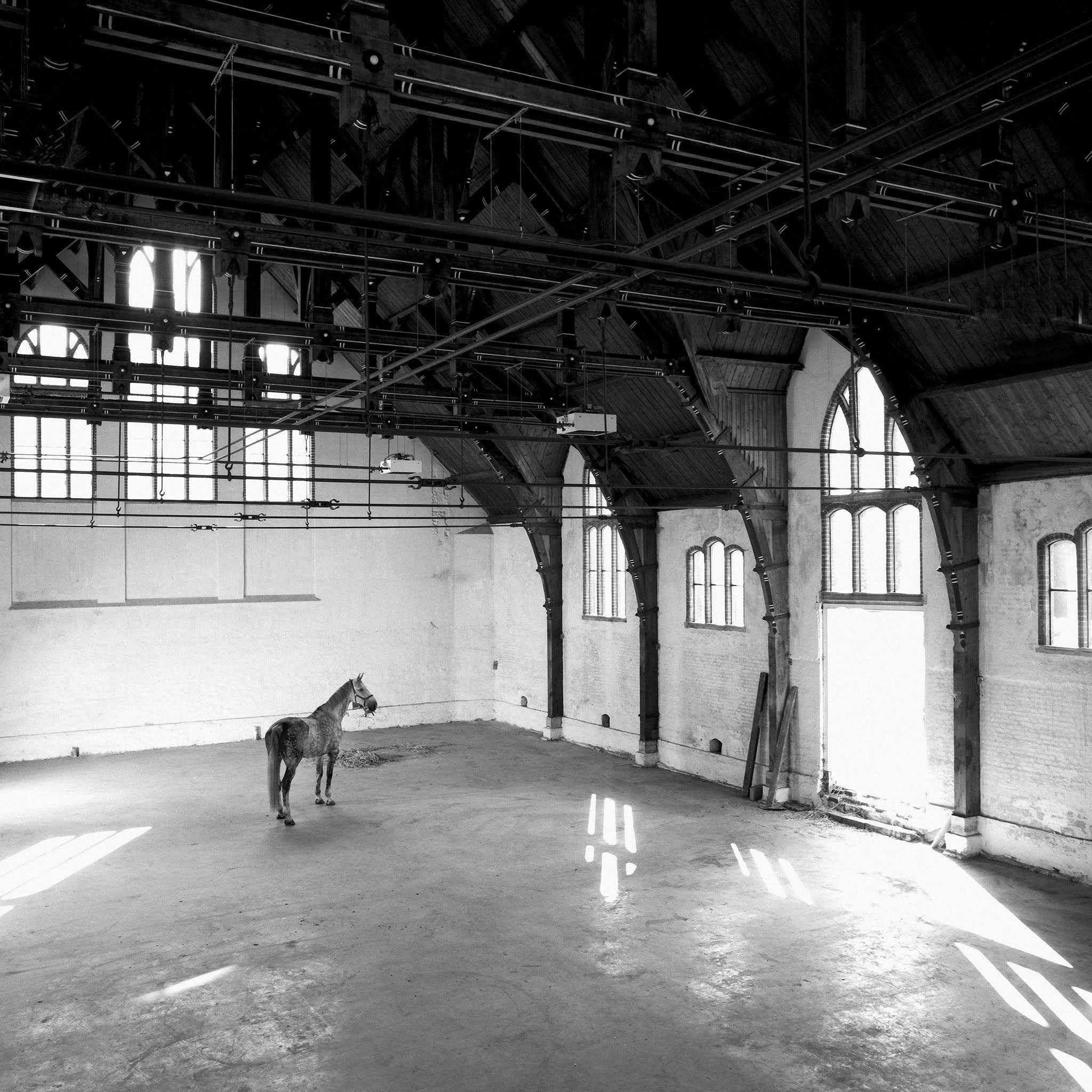 Interieur Paardenkathedraal in 1992 (foto Marco Borggreve)